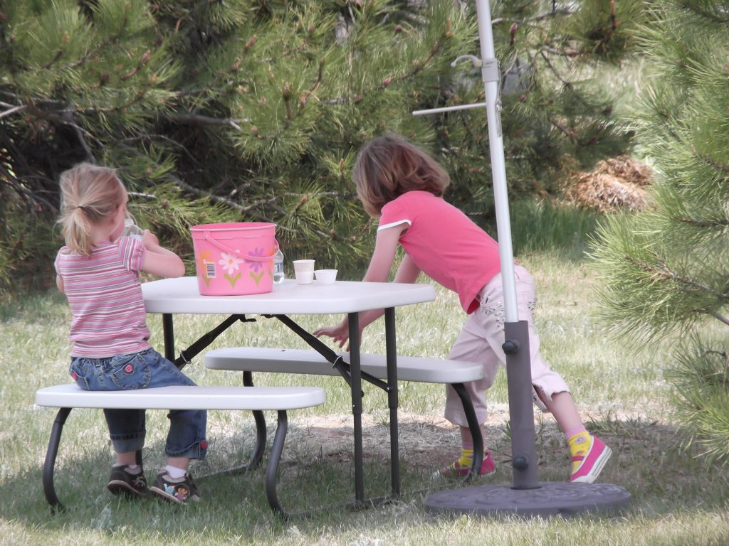 picnicking at the Rhubarb Harvest Festival