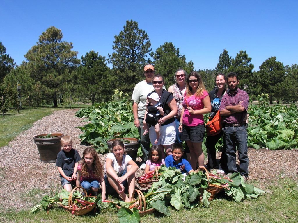 family and friends picking rhubarb at the Rhubarb Harvest Festival