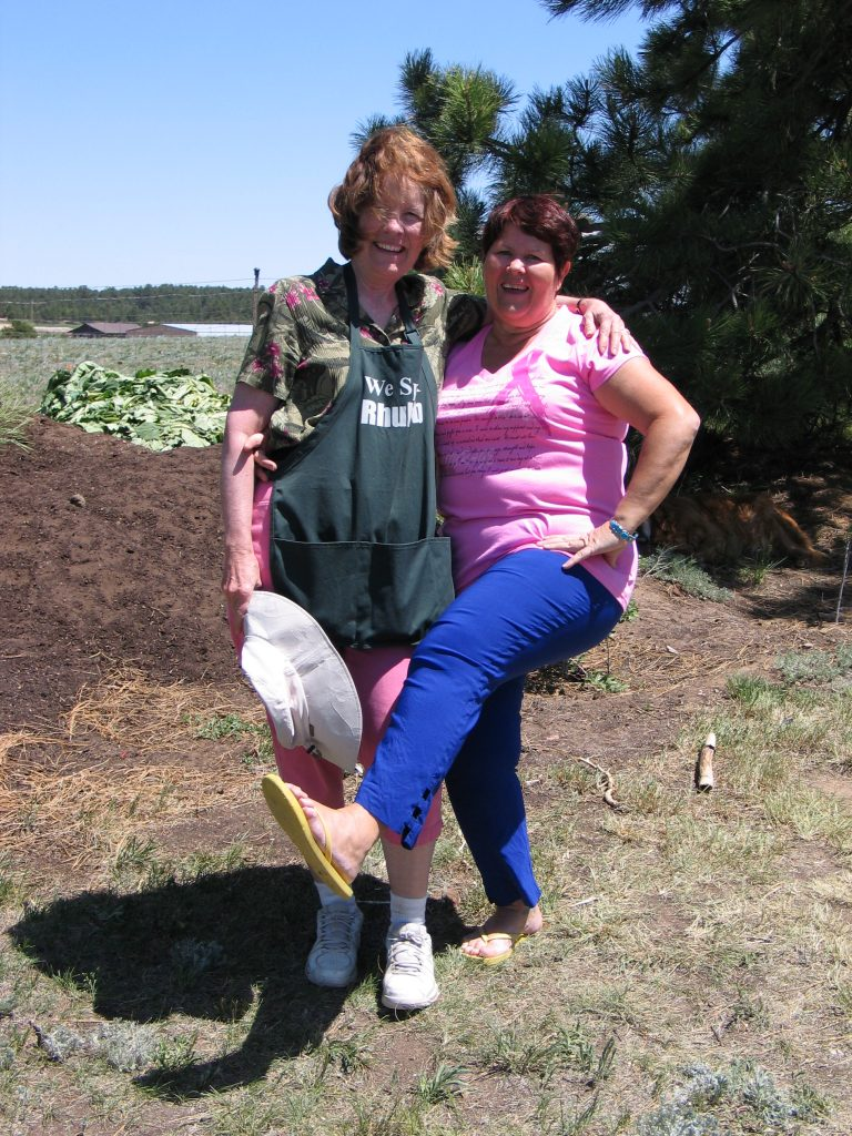 dancing and picking rhubarb at the Rhubarb Harvest Festival