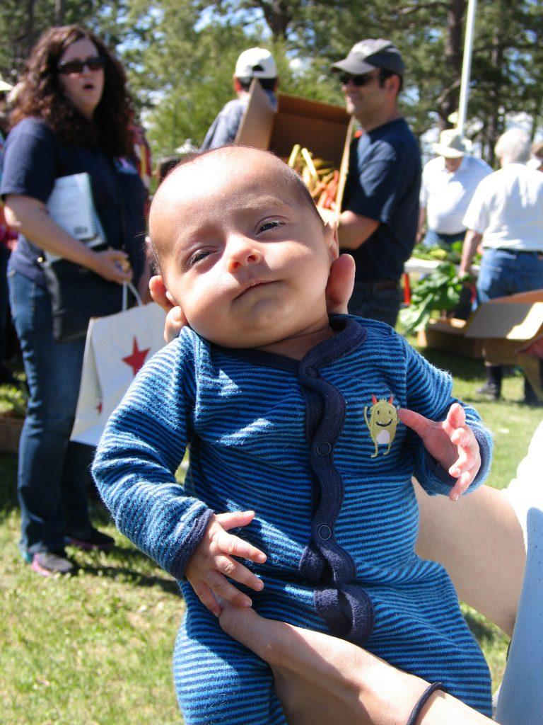 young baby at the Rhubarb Harvest Festival