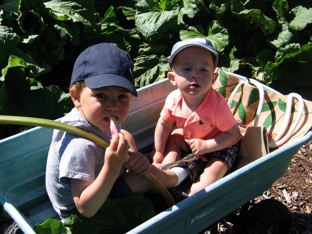 children riding in wagon at the Rhubarb Harvest Festival