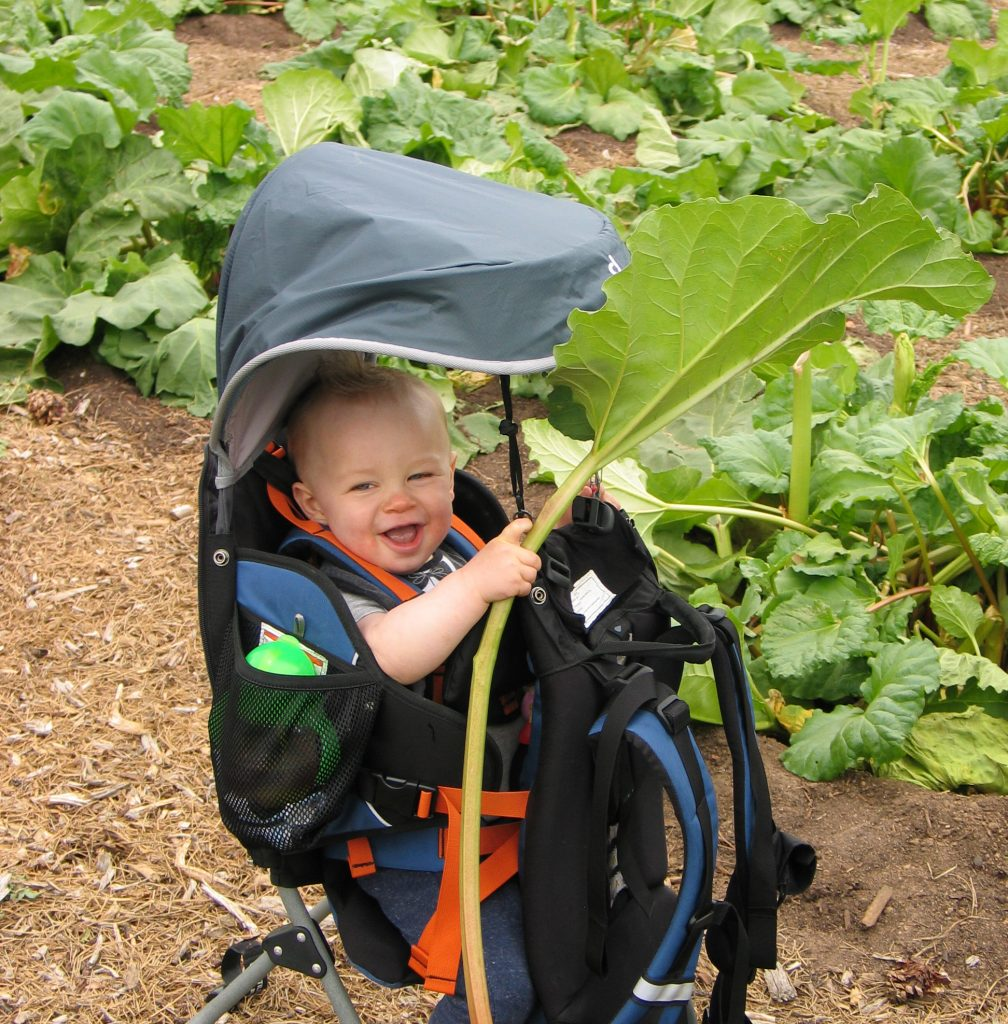 happy baby in stroller with rhubarb