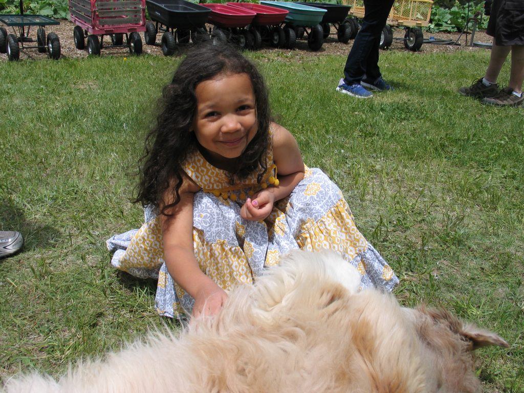 child petting dog at the Rhubarb Harvest Festival
