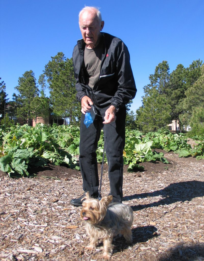 man an dog visit the Rhubarb Harvest Festival
