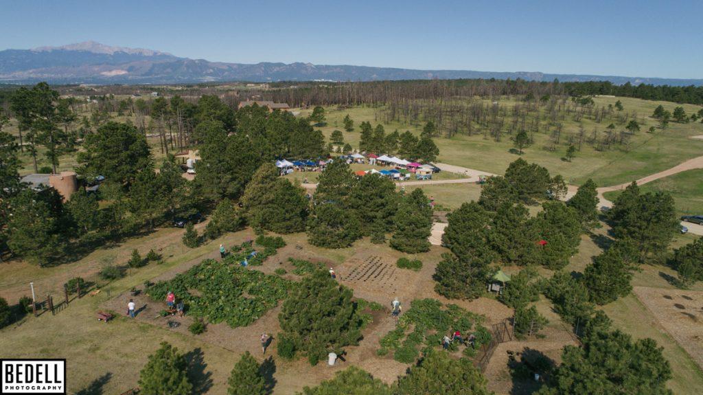 aerial view High Altitude Rhubarb Organic Farm