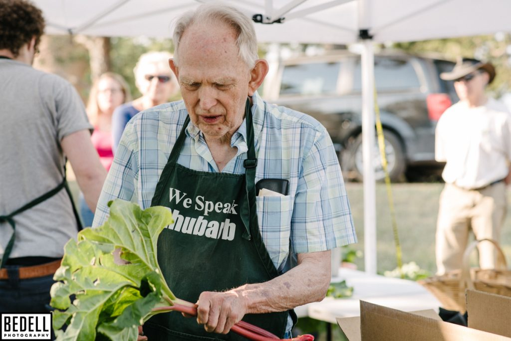 removing rhubarb leaves Dick Augustine